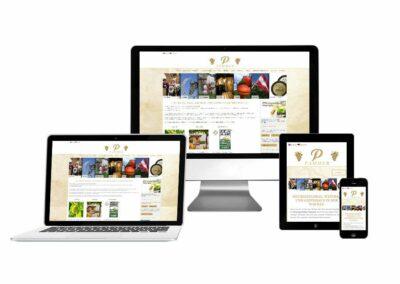 Webdesign Erstellung Weinbau & Weinhandel Pammer